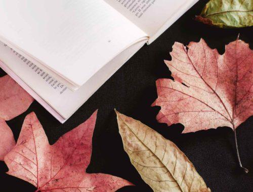 Tutte le novità d'autunno in libreria