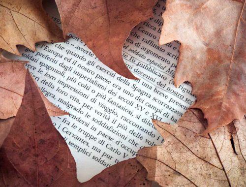 tempo d'autunno tempo di letture
